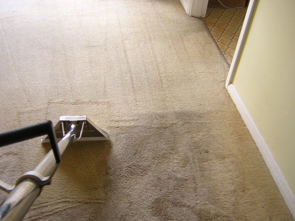 Residential Carpet Cleaning Bourne Valley Cleaning