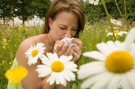 carpet cleaning to prevent allergies in summer Surrey